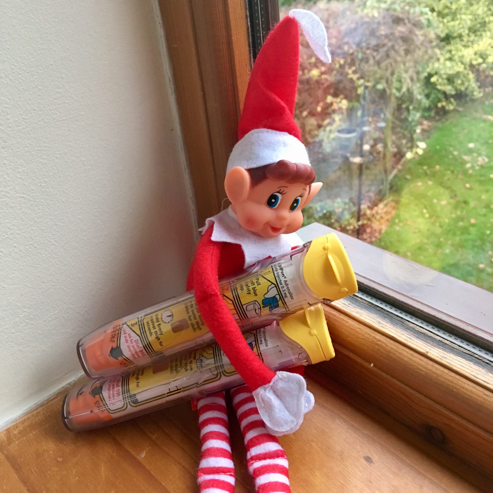 red christmas elf sat on windowsill holding two epipens in its arms
