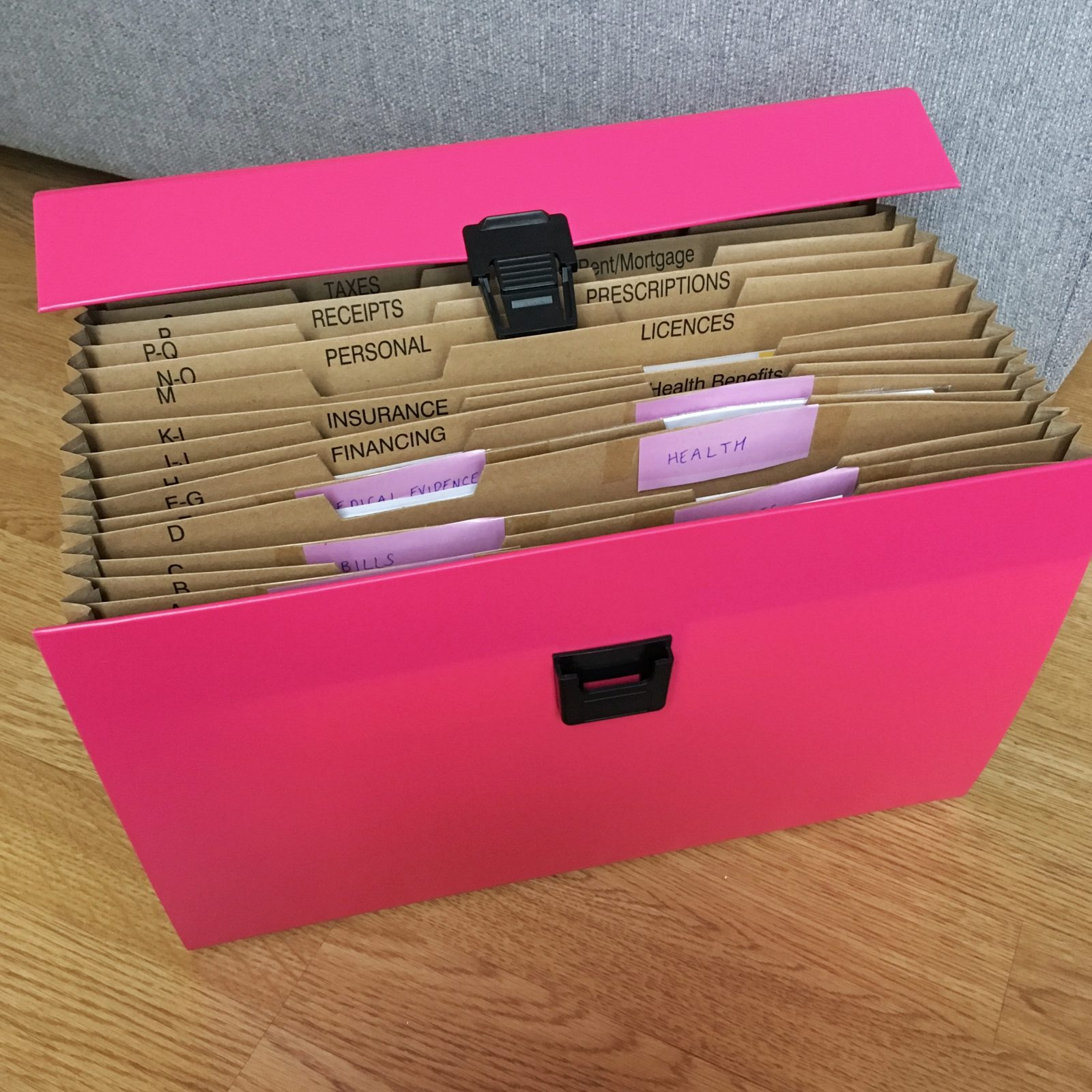pink organisational division file, opened to show different labelled segments